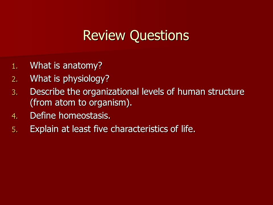 Anatomy Physiology Human Structure Human Function Ppt Video