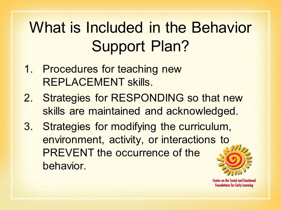 What is Included in the Behavior Support Plan