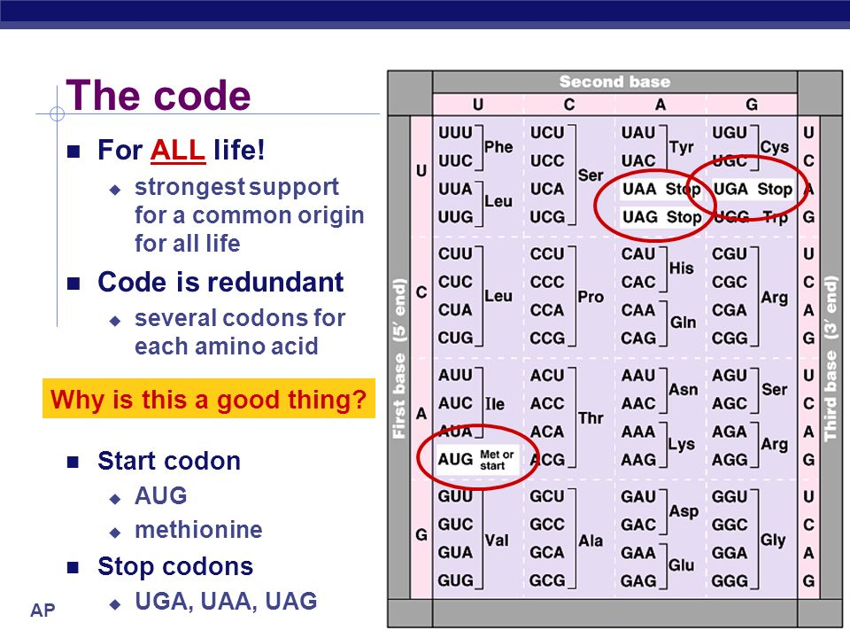 The code For ALL life! Code is redundant Why is this a good thing