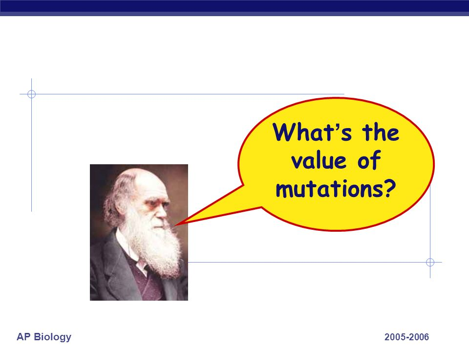 What's the value of mutations 2005-2006