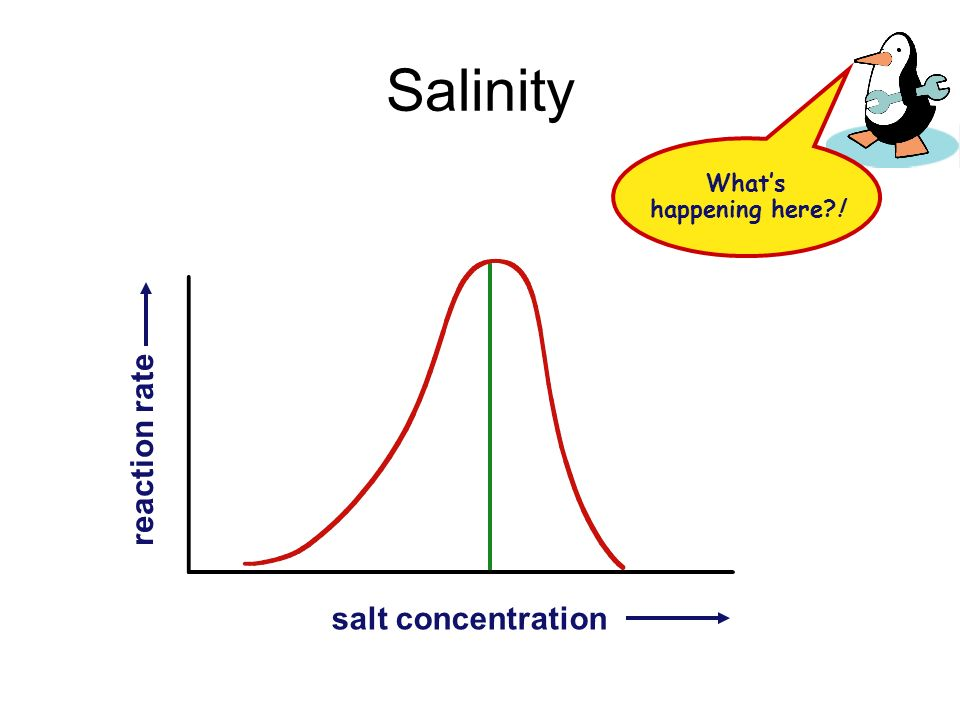 Salinity What's happening here ! reaction rate salt concentration