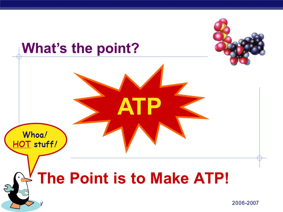 ATP The Point is to Make ATP! What's the point Whoa! HOT stuff!
