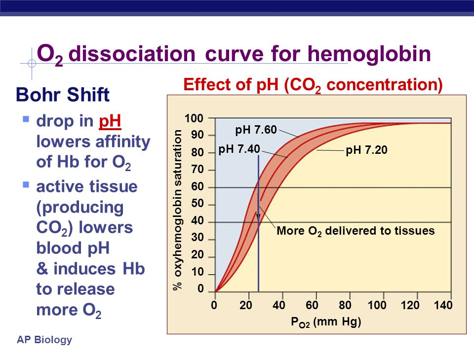 O2 dissociation curve for hemoglobin