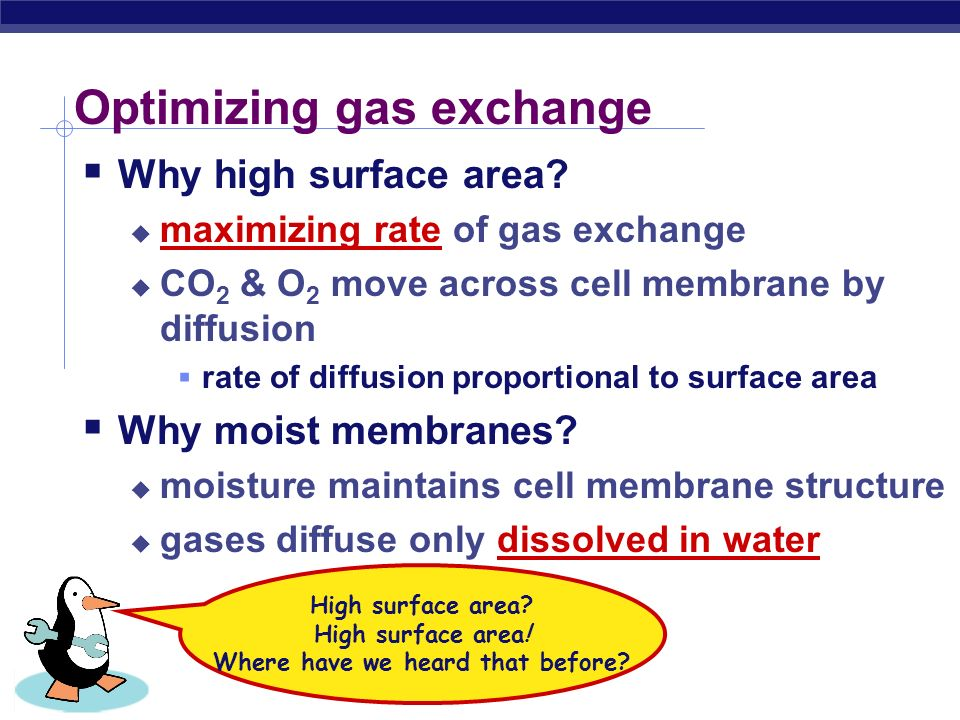 Optimizing gas exchange