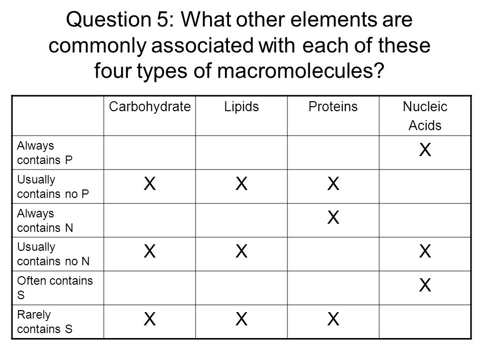 Question 5: What other elements are commonly associated with each of these four types of macromolecules