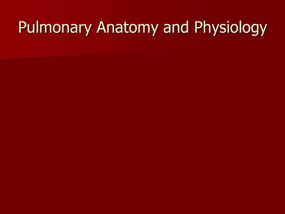 Pulmonary Anatomy and Physiology