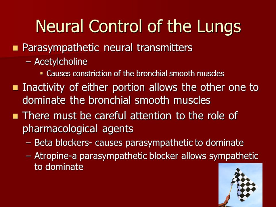 Neural Control of the Lungs