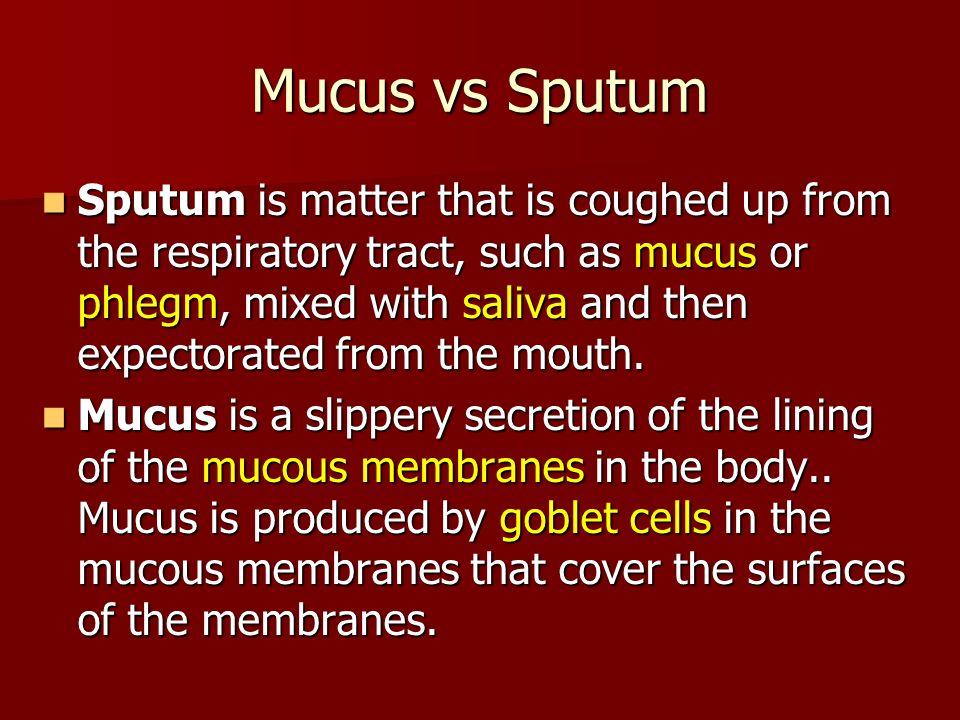 Mucus vs Sputum