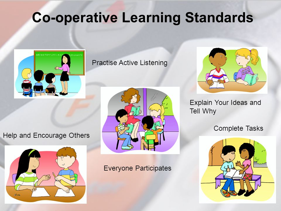 Co-operative Learning Standards