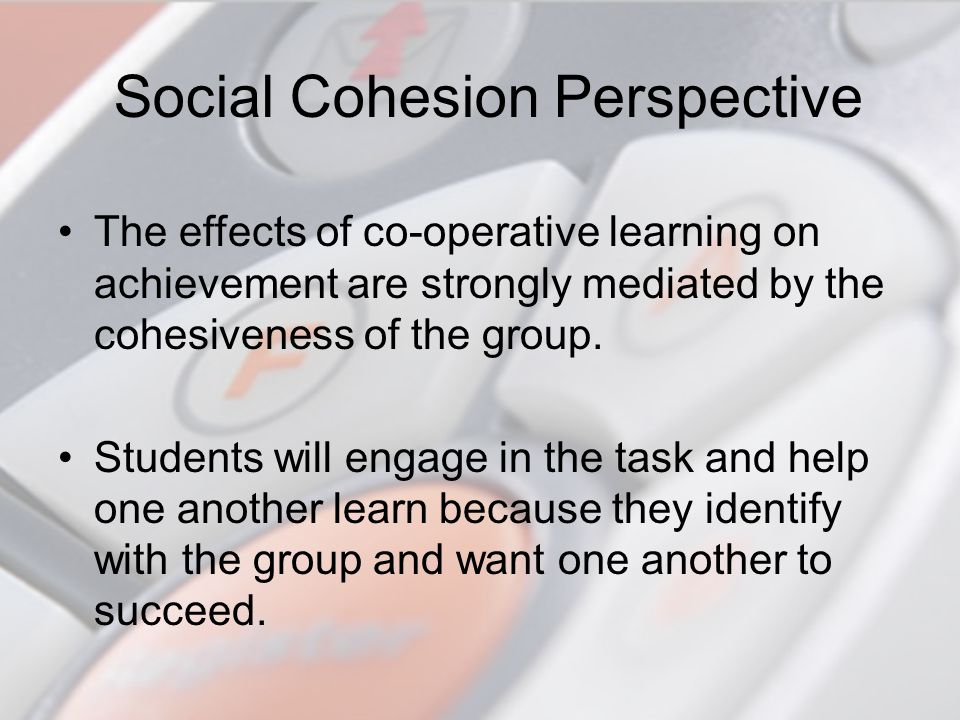 Social Cohesion Perspective