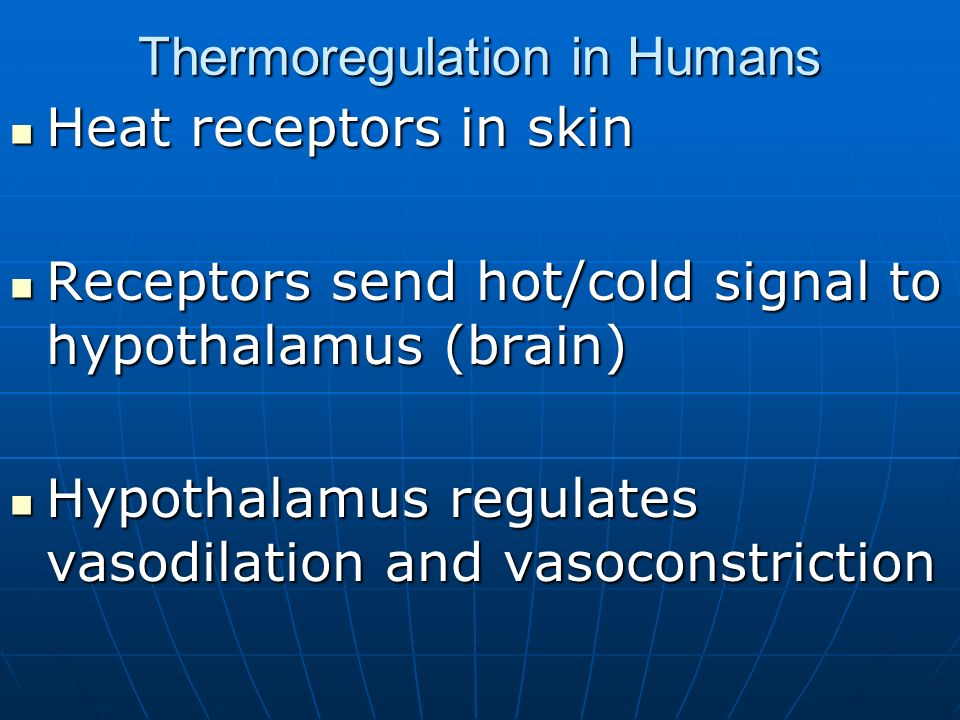 Thermoregulation in Humans