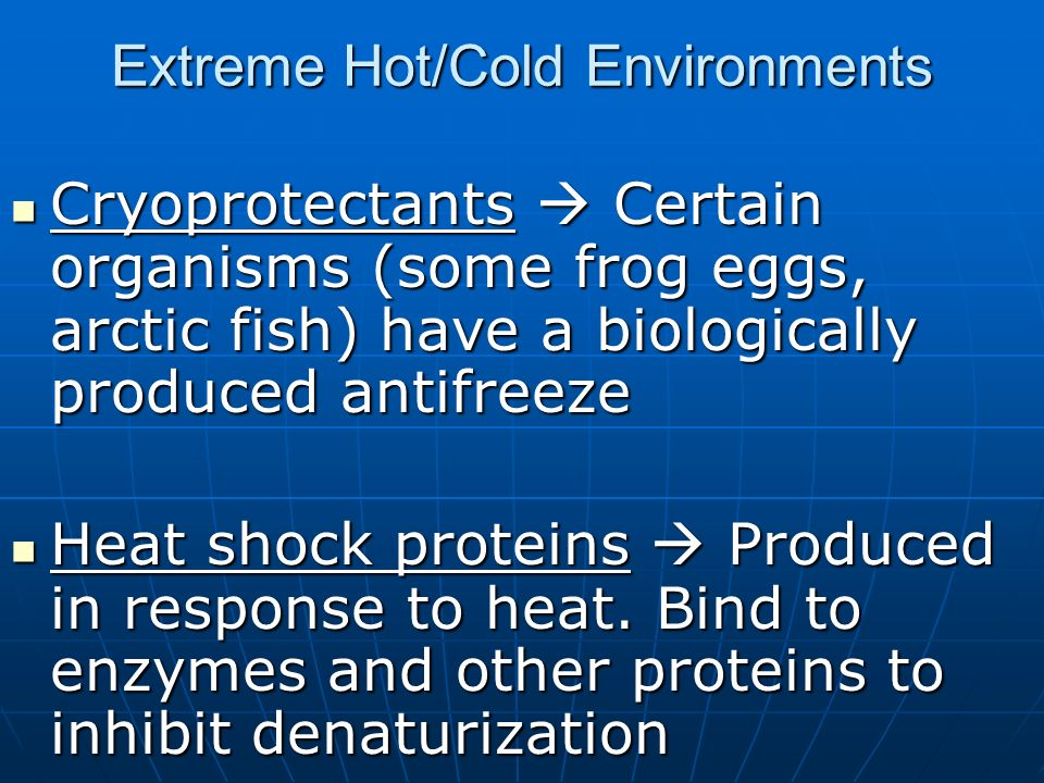 Extreme Hot/Cold Environments