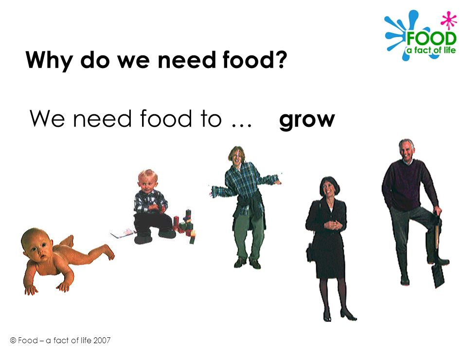 Why do we need food We need food to … grow