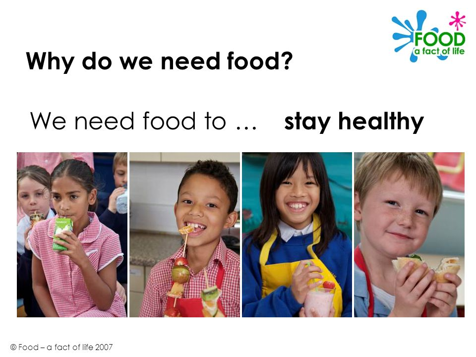 Why do we need food We need food to … stay healthy