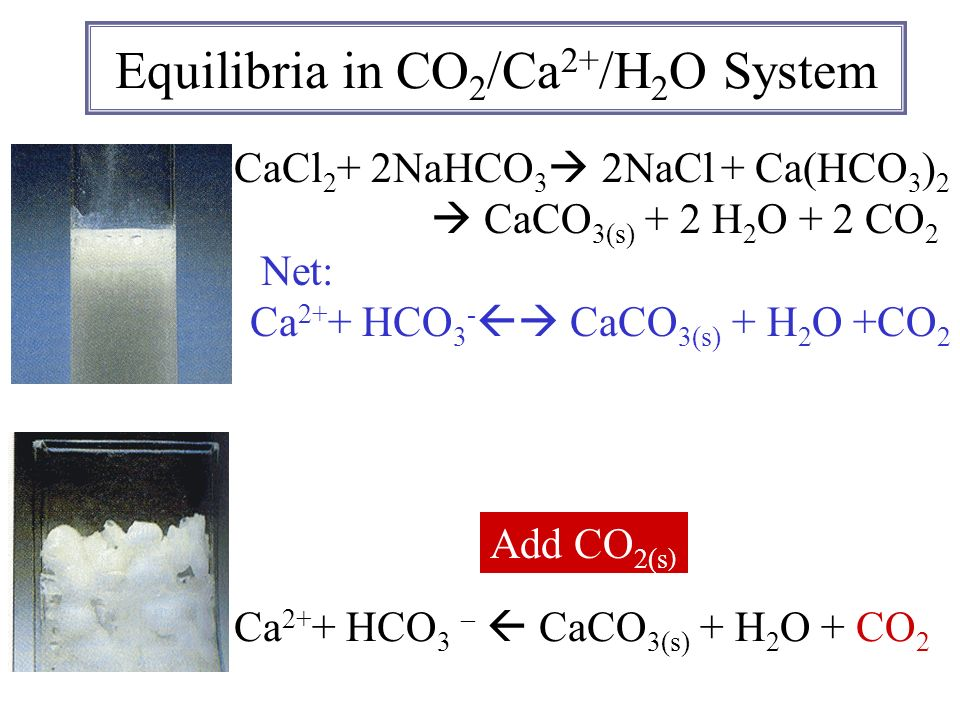 Equilibria in CO2/Ca2+/H2O System
