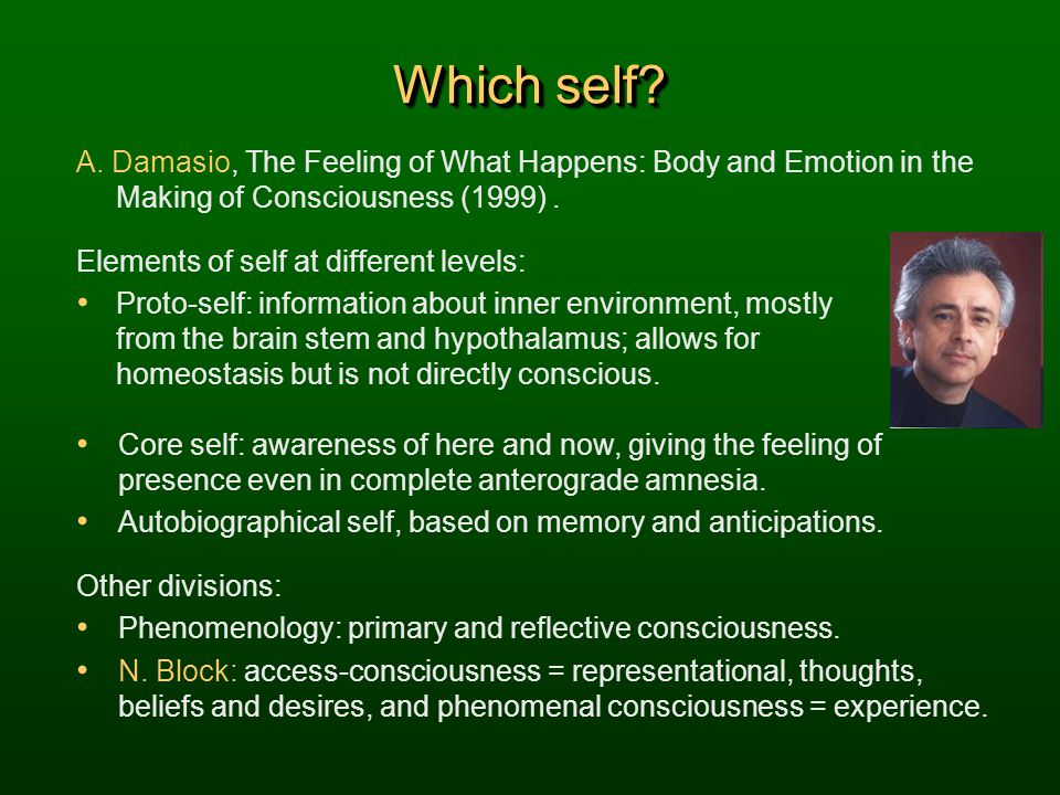 Which self A. Damasio, The Feeling of What Happens: Body and Emotion in the Making of Consciousness (1999) .