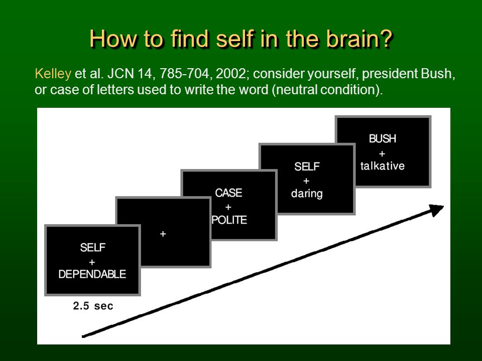 How to find self in the brain
