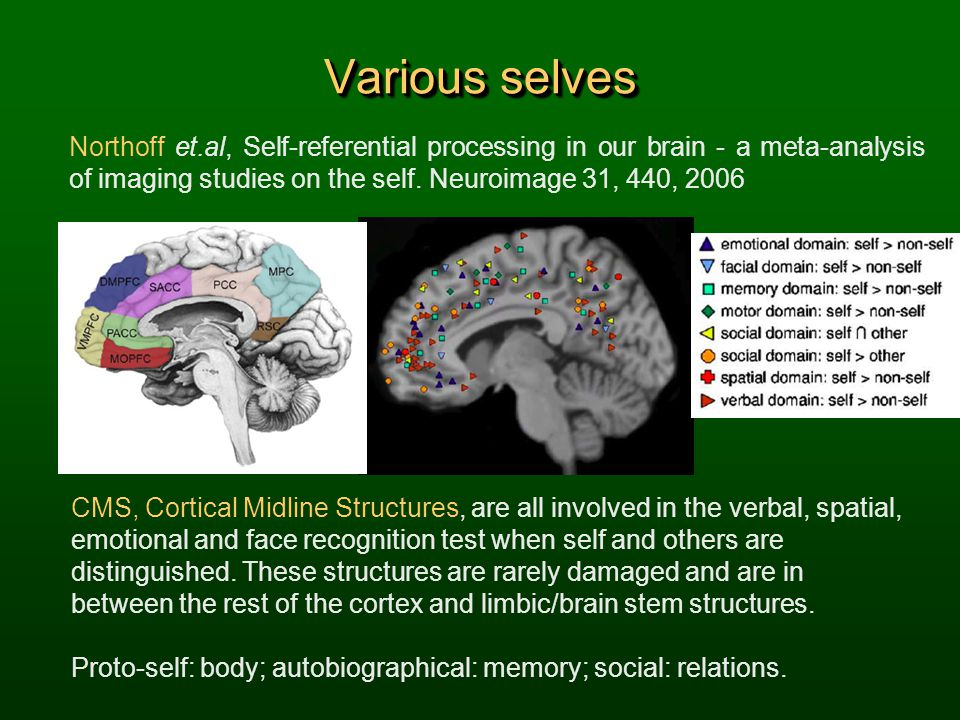 Various selves Northoff et.al, Self-referential processing in our brain - a meta-analysis of imaging studies on the self. Neuroimage 31, 440, 2006.