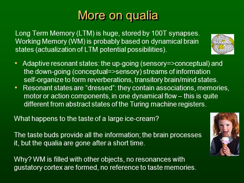 More on qualia Long Term Memory (LTM) is huge, stored by 100T synapses.