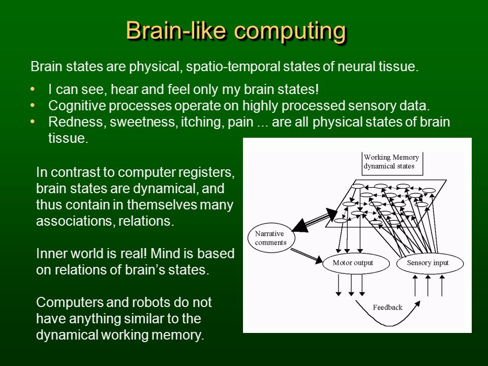 Brain-like computing Brain states are physical, spatio-temporal states of neural tissue. I can see, hear and feel only my brain states!