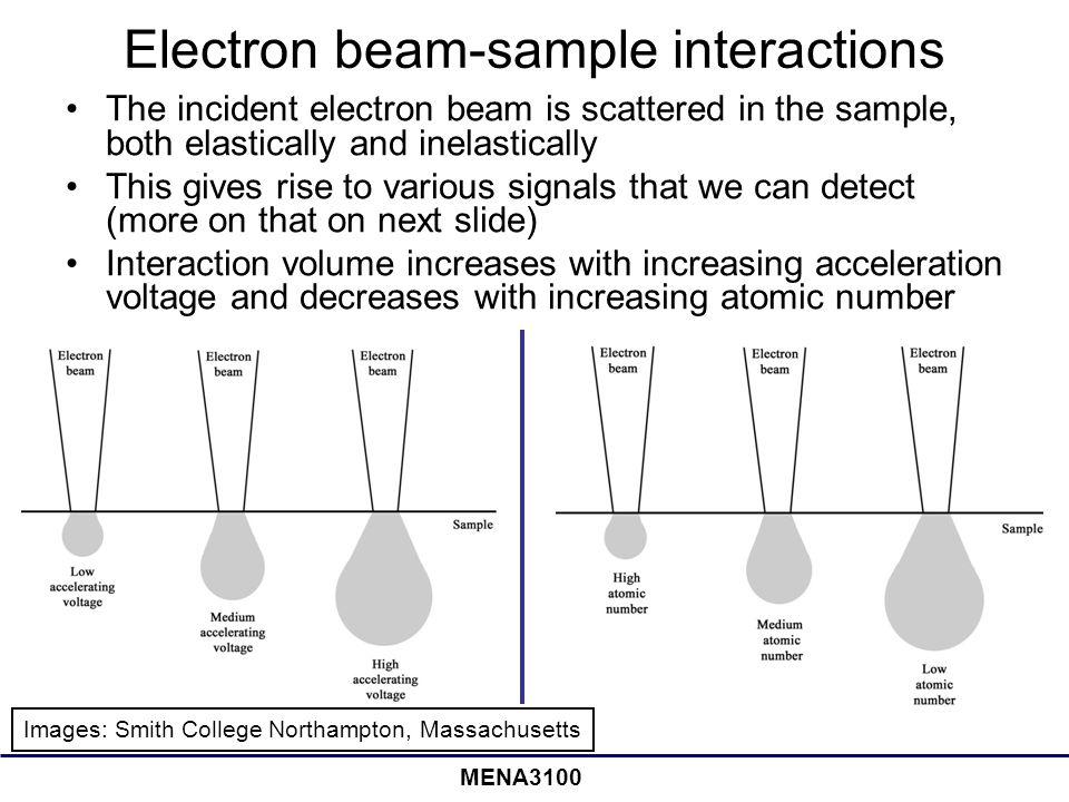 Electron beam-sample interactions