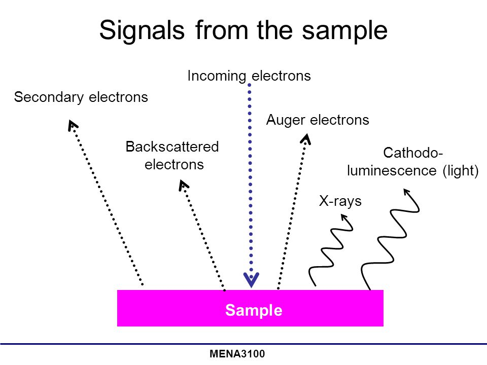 Signals from the sample