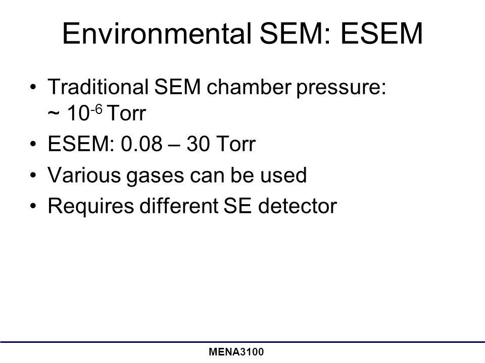 Environmental SEM: ESEM