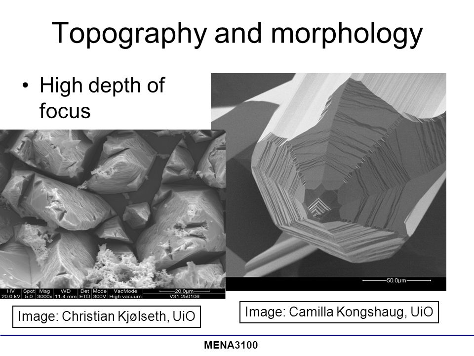 Topography and morphology