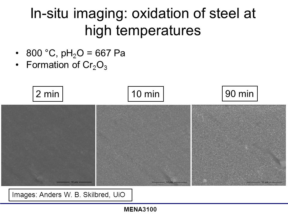 In-situ imaging: oxidation of steel at high temperatures