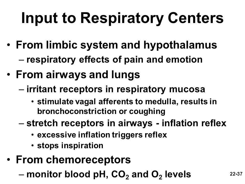 Input to Respiratory Centers