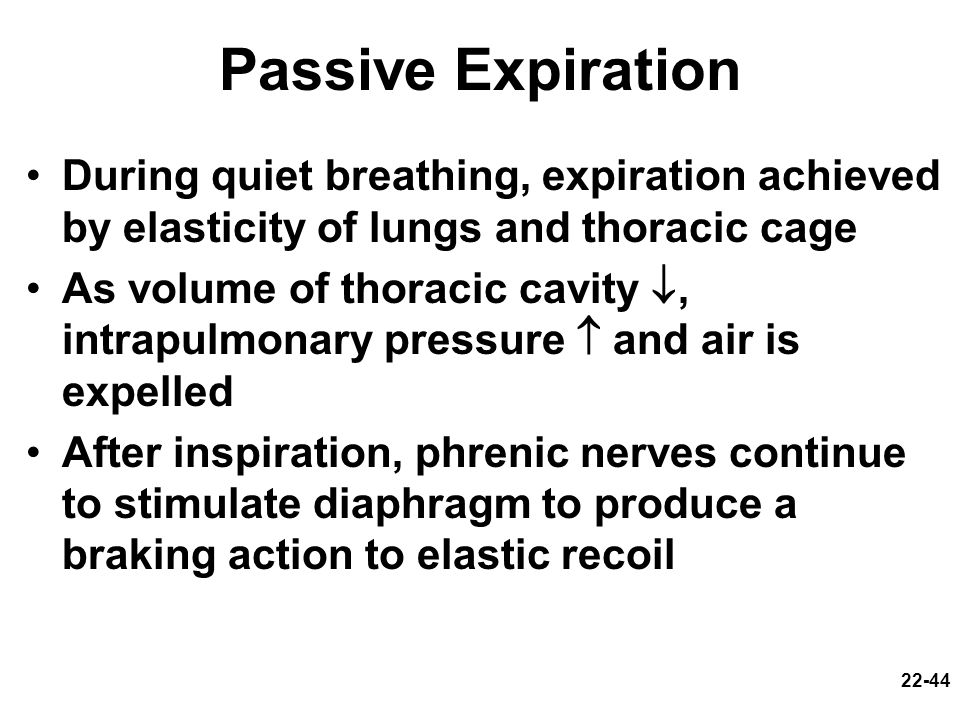 Passive Expiration During quiet breathing, expiration achieved by elasticity of lungs and thoracic cage.