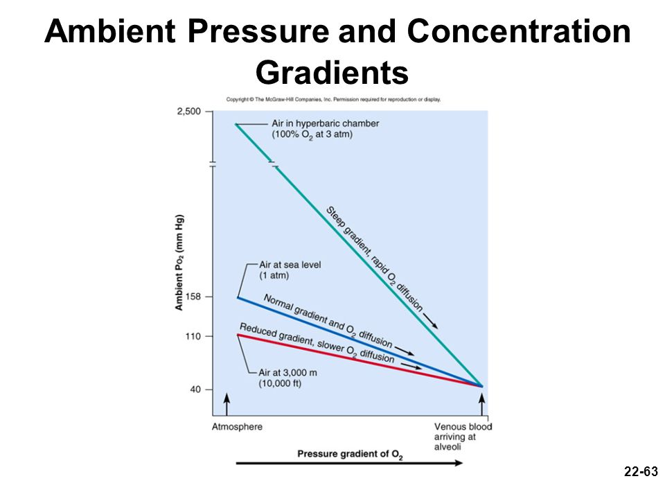 Ambient Pressure and Concentration Gradients