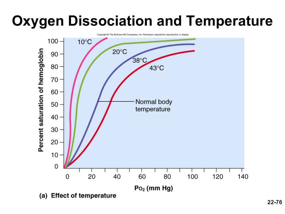 Oxygen Dissociation and Temperature