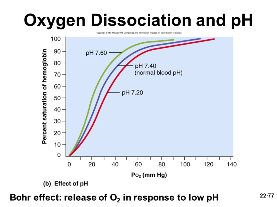 Oxygen Dissociation and pH
