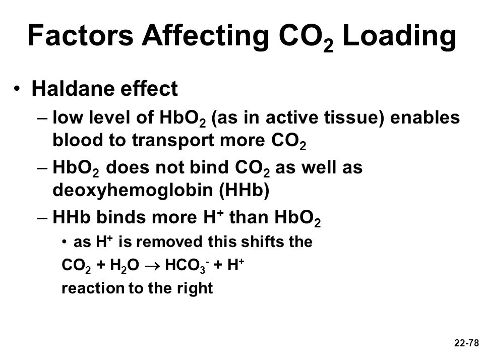 Factors Affecting CO2 Loading