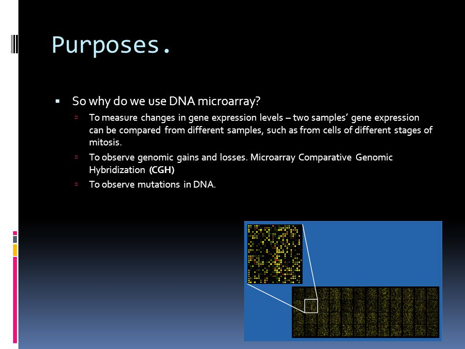 Purposes. So why do we use DNA microarray