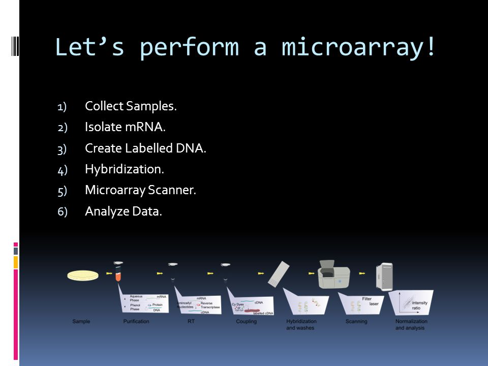 Let's perform a microarray!