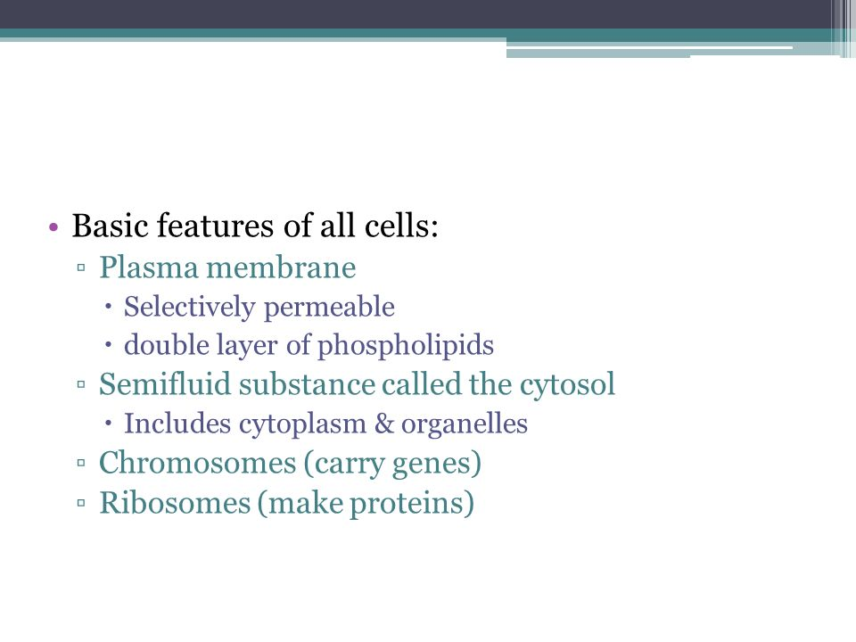 Basic features of all cells:
