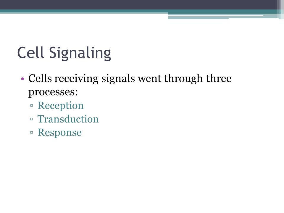Cell Signaling Cells receiving signals went through three processes: