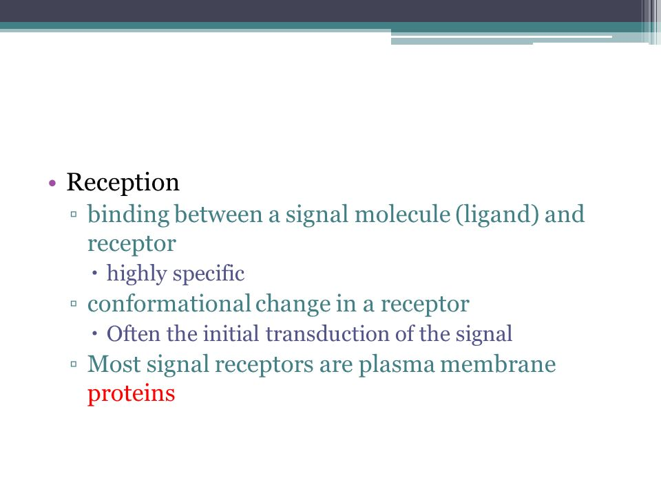 Reception binding between a signal molecule (ligand) and receptor