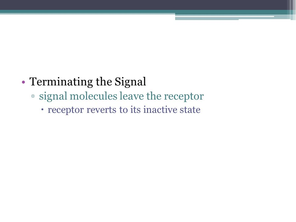 Terminating the Signal