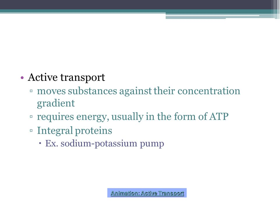 Animation: Active Transport