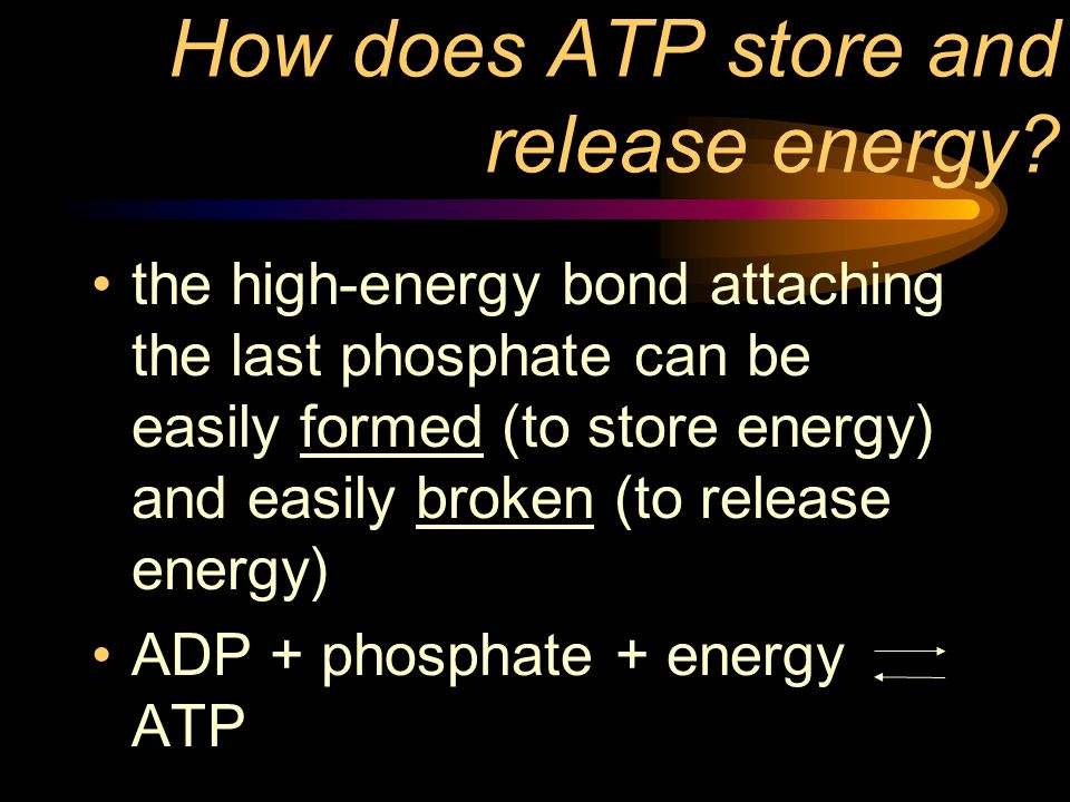 How does ATP store and release energy