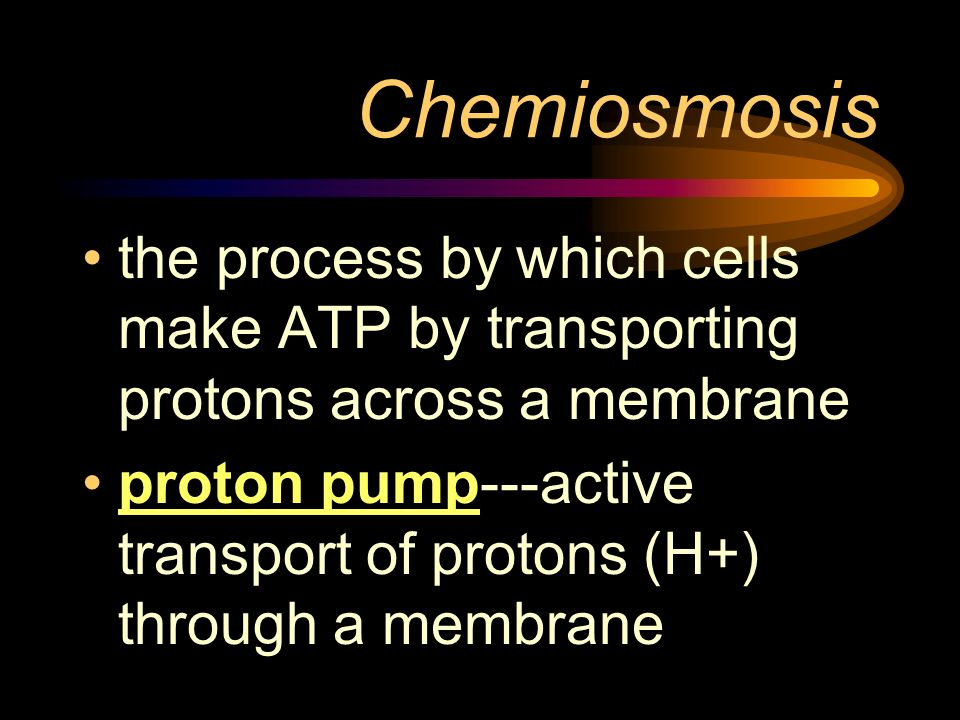 Chemiosmosisthe process by which cells make ATP by transporting protons across a membrane.
