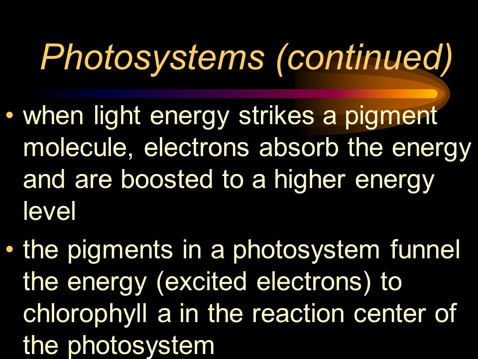 Photosystems (continued)