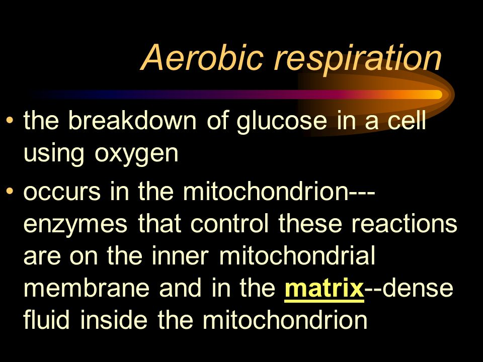 Aerobic respiration the breakdown of glucose in a cell using oxygen