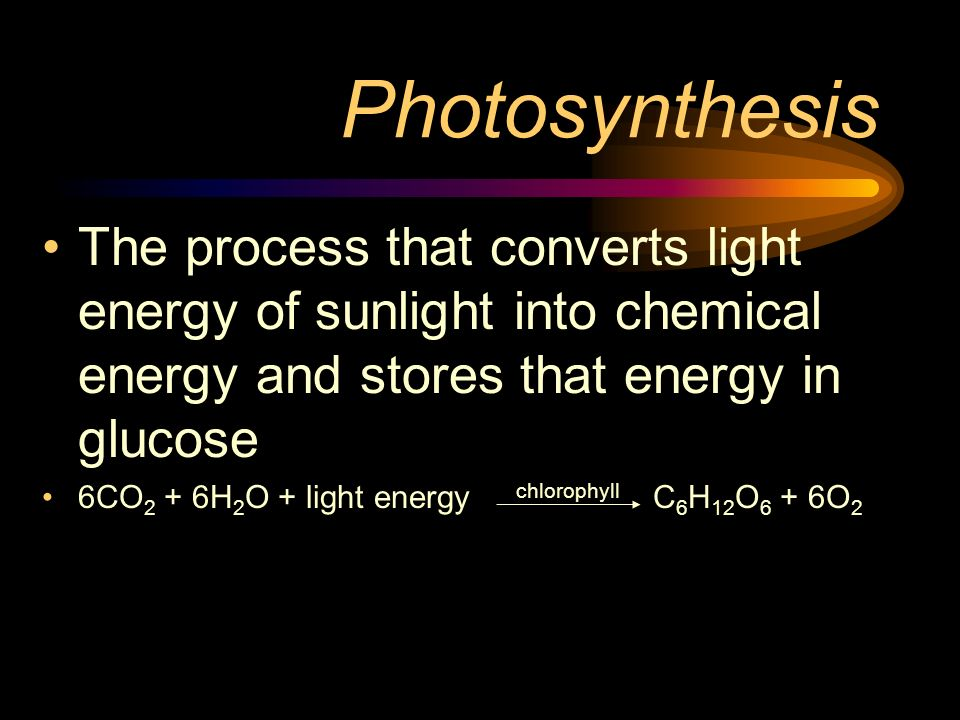 Photosynthesis The process that converts light energy of sunlight into chemical energy and stores that energy in glucose.