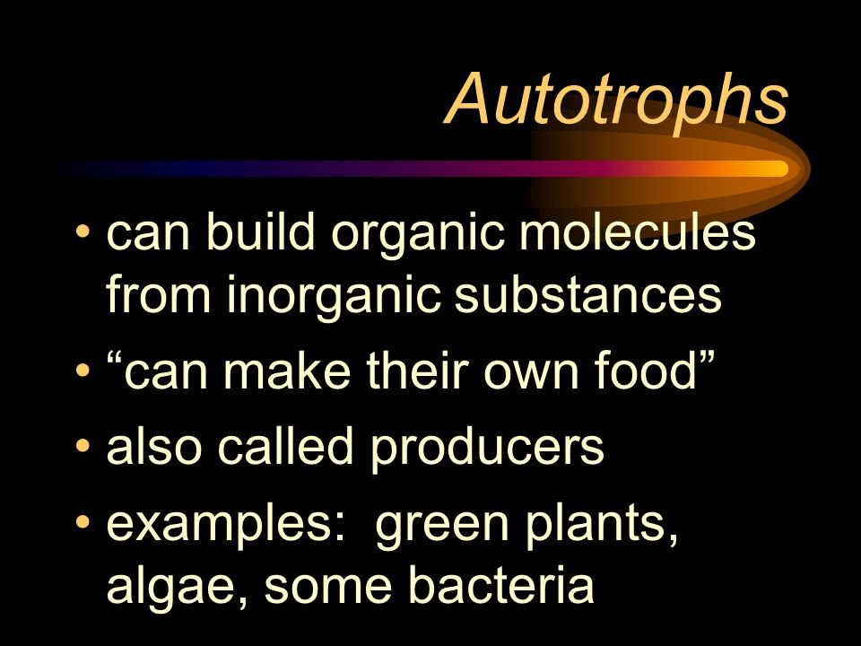 Autotrophs can build organic molecules from inorganic substances