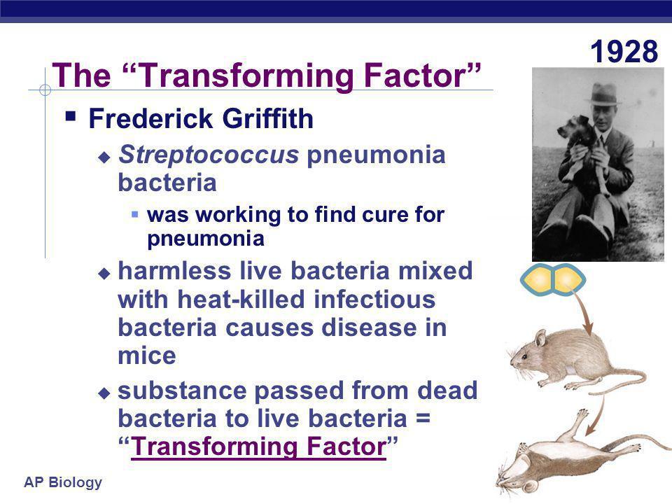The Transforming Factor