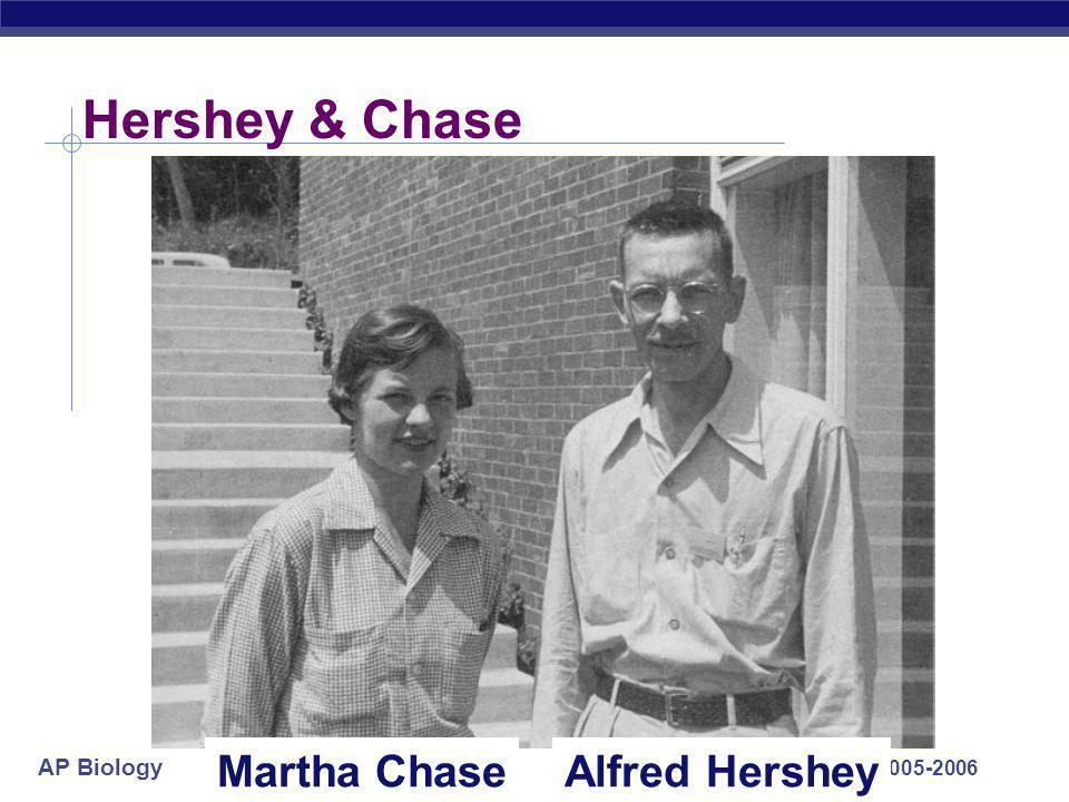 Hershey & Chase Martha Chase Alfred Hershey 2005-2006